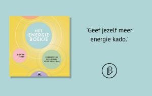 Recensie: Donna Eden & Dondi Dahlin – Het energieboekje