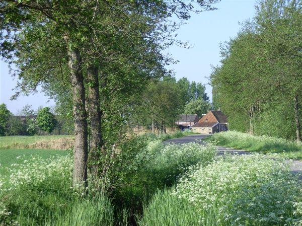 lente zomer herfst en winter Pakes boerderijke
