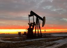 Oil prices continue to fall as OPEC+ uncertainty weighs   BOE Report