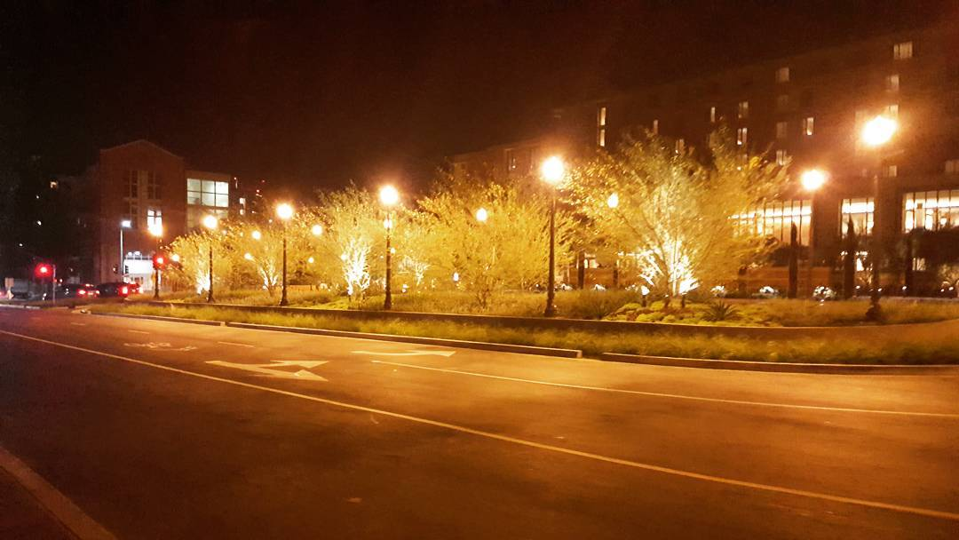 Some parts of UCLA have gotten more picturesque at night