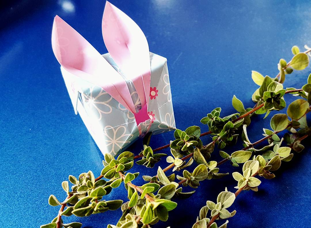The bunnies are in the oregano again