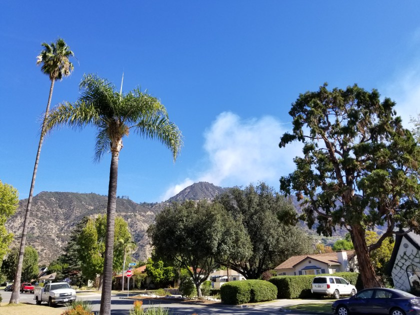Wilson Fire in my front yard