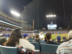 The crowd at the stadium just behind the safety netting looking up towards the third base side beneath bright lights