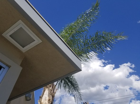 Picture of the corner of the drive through looking up at a palm tree, the sky and some white puffy clouds