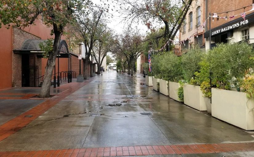 Wet from a recent rain, a view down a side alley lined with trees and greenery just south of Colorado Boulevard