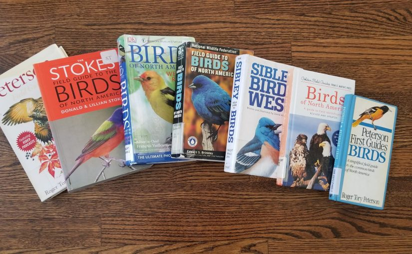 seven large handbooks on birds spread out on the floor