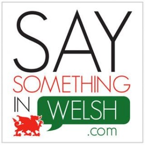 Logo for SaySomethingInWelsh.com featuring a red dragon with a green speech bubble containing the word Welsh