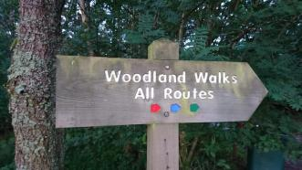Signpost pointing the way to three colour-coded woodland walks