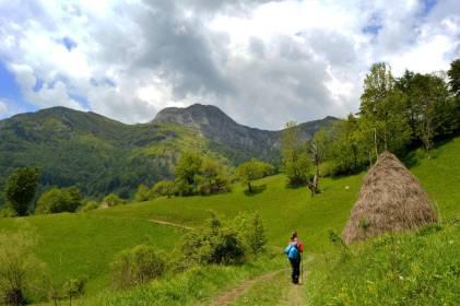 Bandă Roșie de Munții Cernei