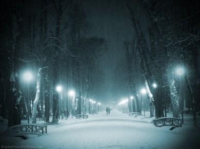 Parcul Central - Cluj-Napoca