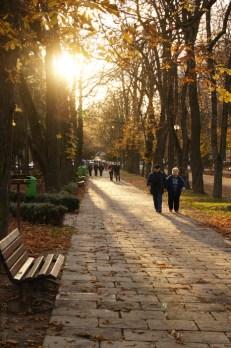 Parcul Central Cluj-Napoca - Noiembrie 2010