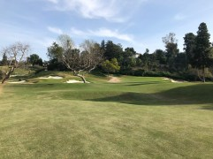 14th approach, with both green complexes in view.