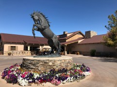 Cool horse statue in front of clubhouse.
