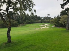 11th approach (side angle from cart path).