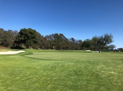 Close view of 5th green.