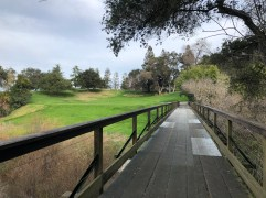 Obligatory bridge view.