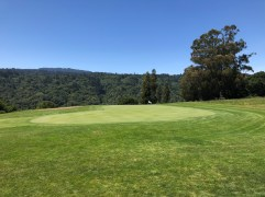 Side view of 7th green.