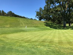 Behind 1st green to show how steep that drop is.