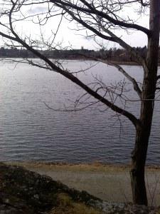 The Chestnut Hill Reservoir on Feb 4, 2012