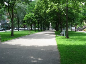 The Commonwealth Avenue Mall is beautiful, 1 mile from Mass Ave to the Public Garden