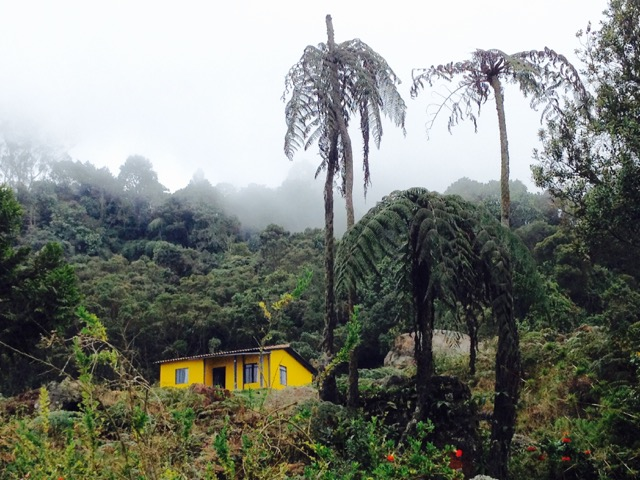 Chicaque National Park: A 2-Day Romantic Getaway