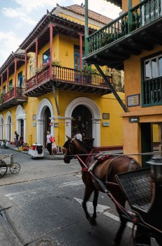 horse carriages in cartagena colombia