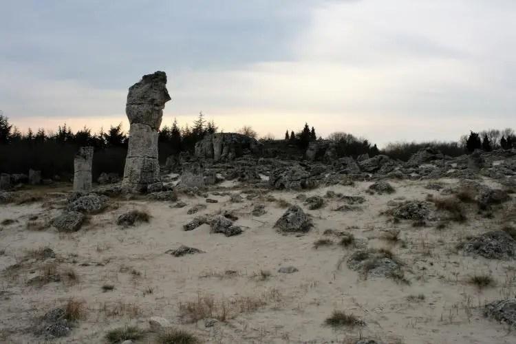 Stone forest 'Pobiti Kamani' in Bulgaria