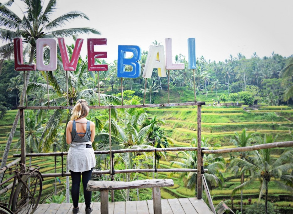i love bali rice fields ubud bali indonesia