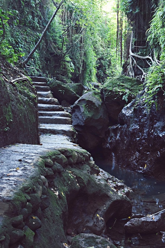 magical steps in monkey forest ubud bali