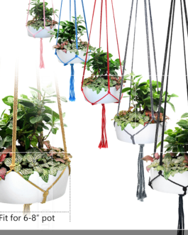 Boho Chic Macrame Plant Hanger Cotton Rope  Pot Hanger