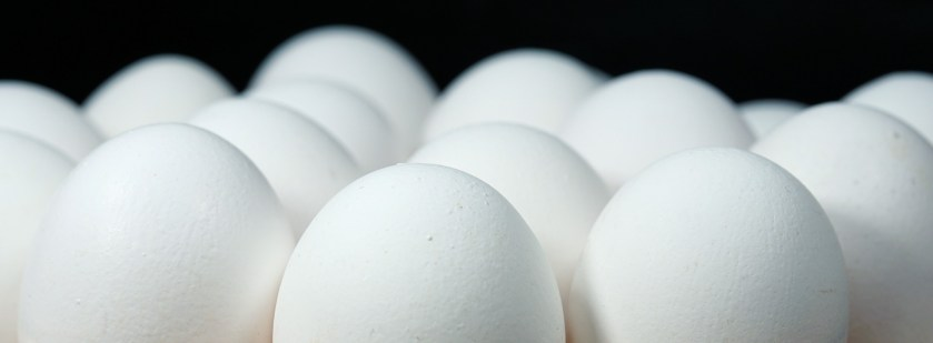 Egg whites are low in fat and high in protein, making them helpful editions to the diet.  Egg yolks in contrast, contain fat in cholesterol but also the most flavor