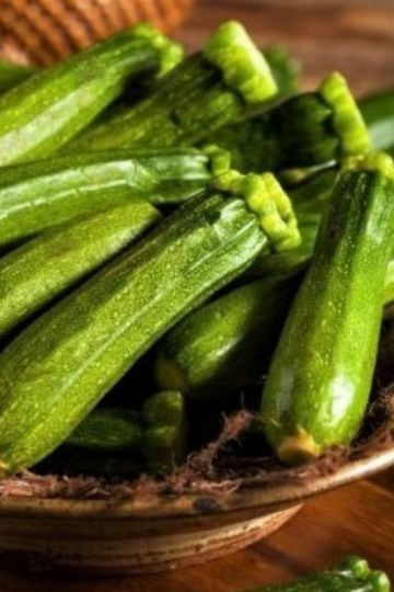 zucchini properties