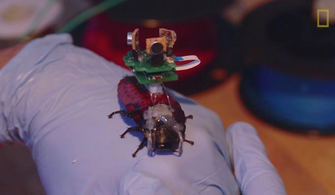 biobots02