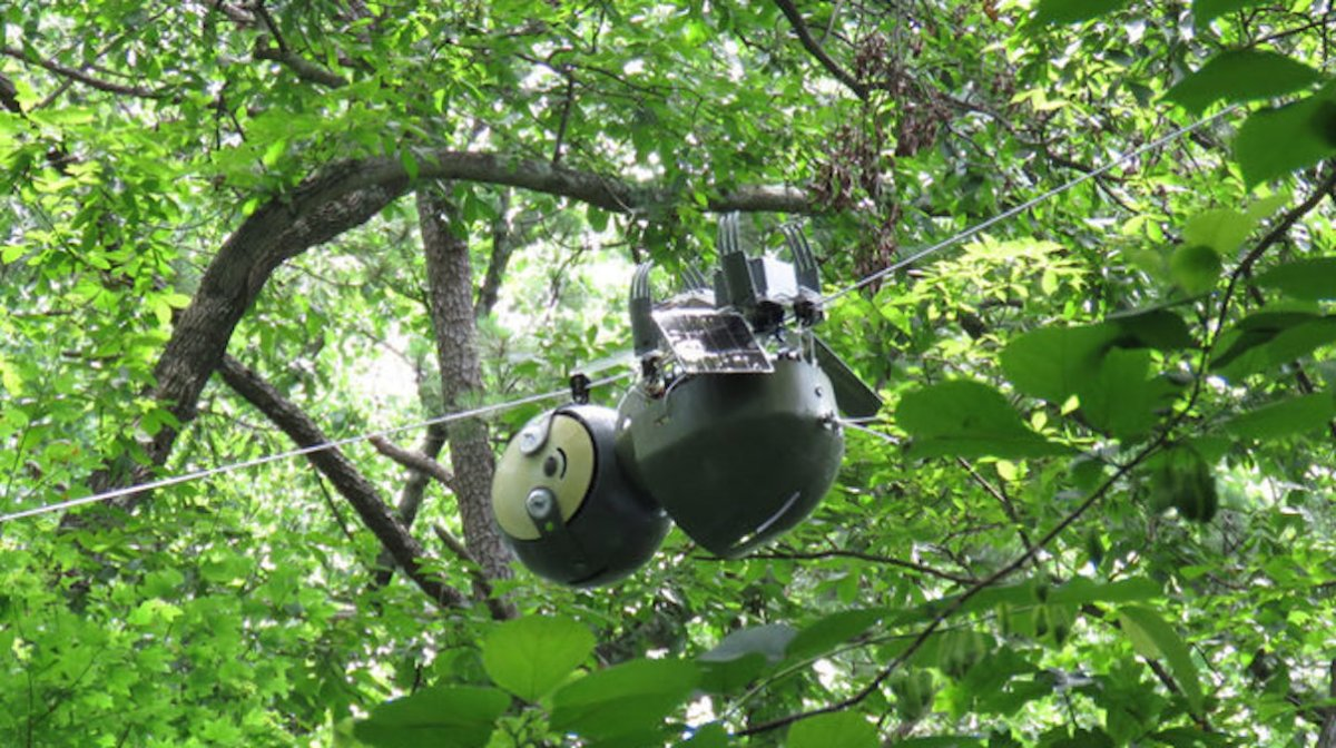 Gennaro Notomista, a PhD student in the Robotics and InTelligent Systems Laboratory at Georgia Tech, has created a unique alternative to drone monitoring, now commonly used in land management. Drones are not very energy efficient and can't remain in the air f…