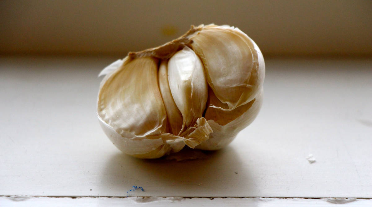 An attempt to master a new garlic-peeling technique