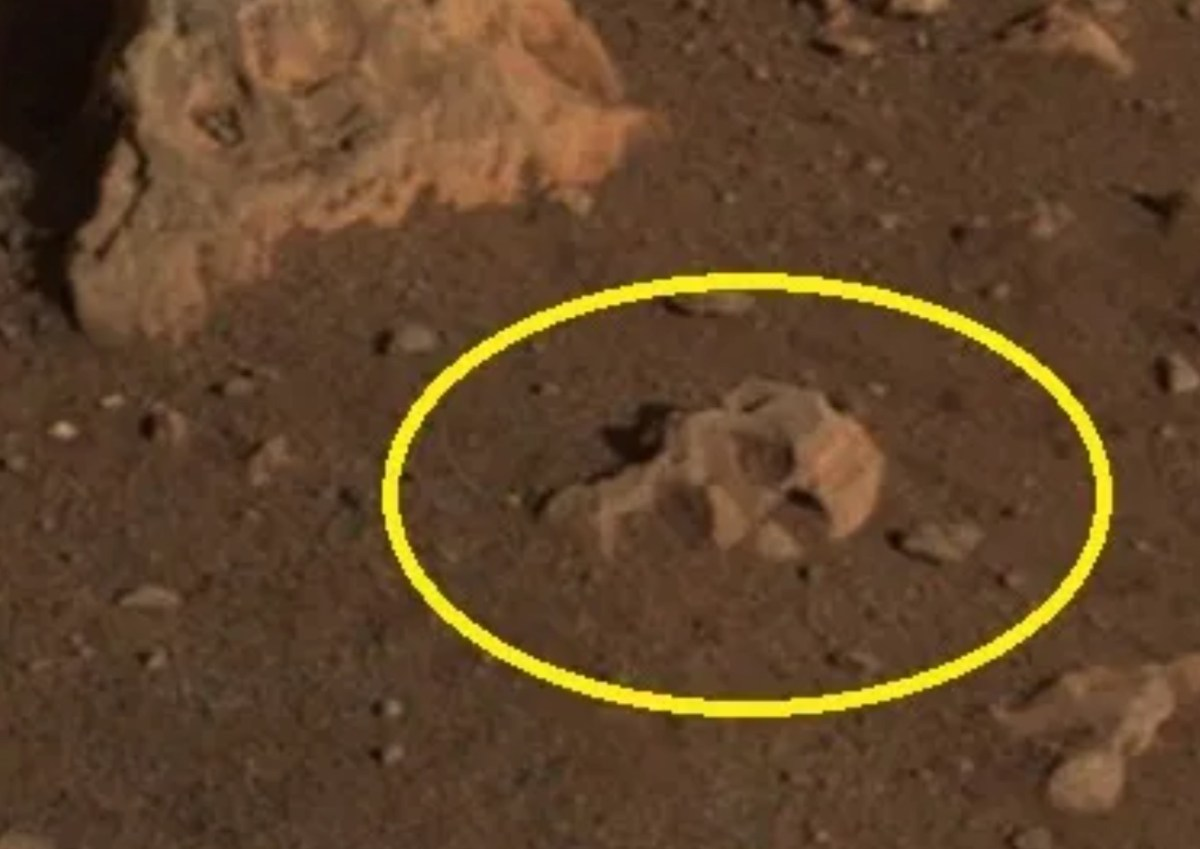 Alien skull seen in new Mars Rover image and other fun anomalies spotted on the Red Planet this week | Boing Boing
