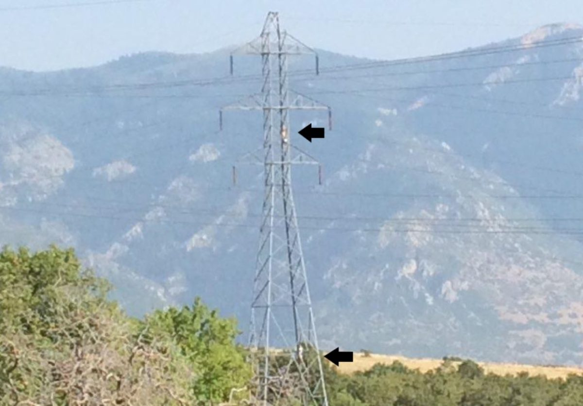 Utah sheriff: Please stop hanging hammocks from high-voltage towers | Boing Boing