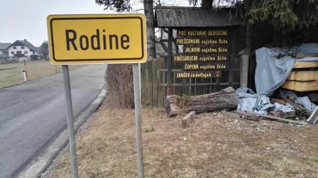 Rodine