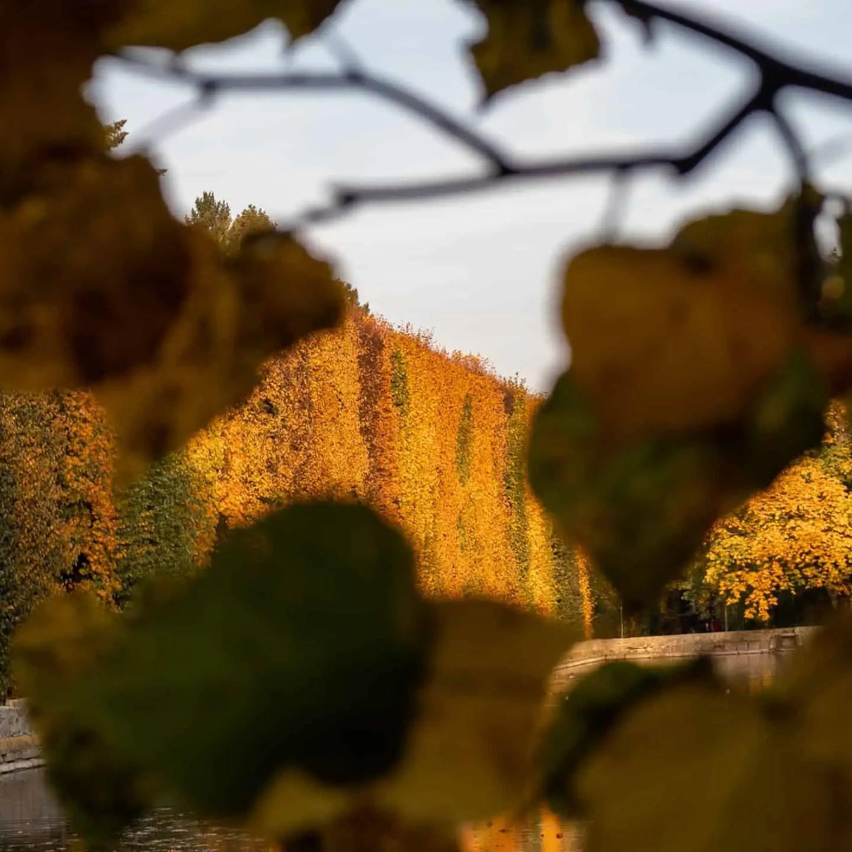 Krajobraz jesieni 8 - Zasady kompozycji - przewodnik po 20 regułach