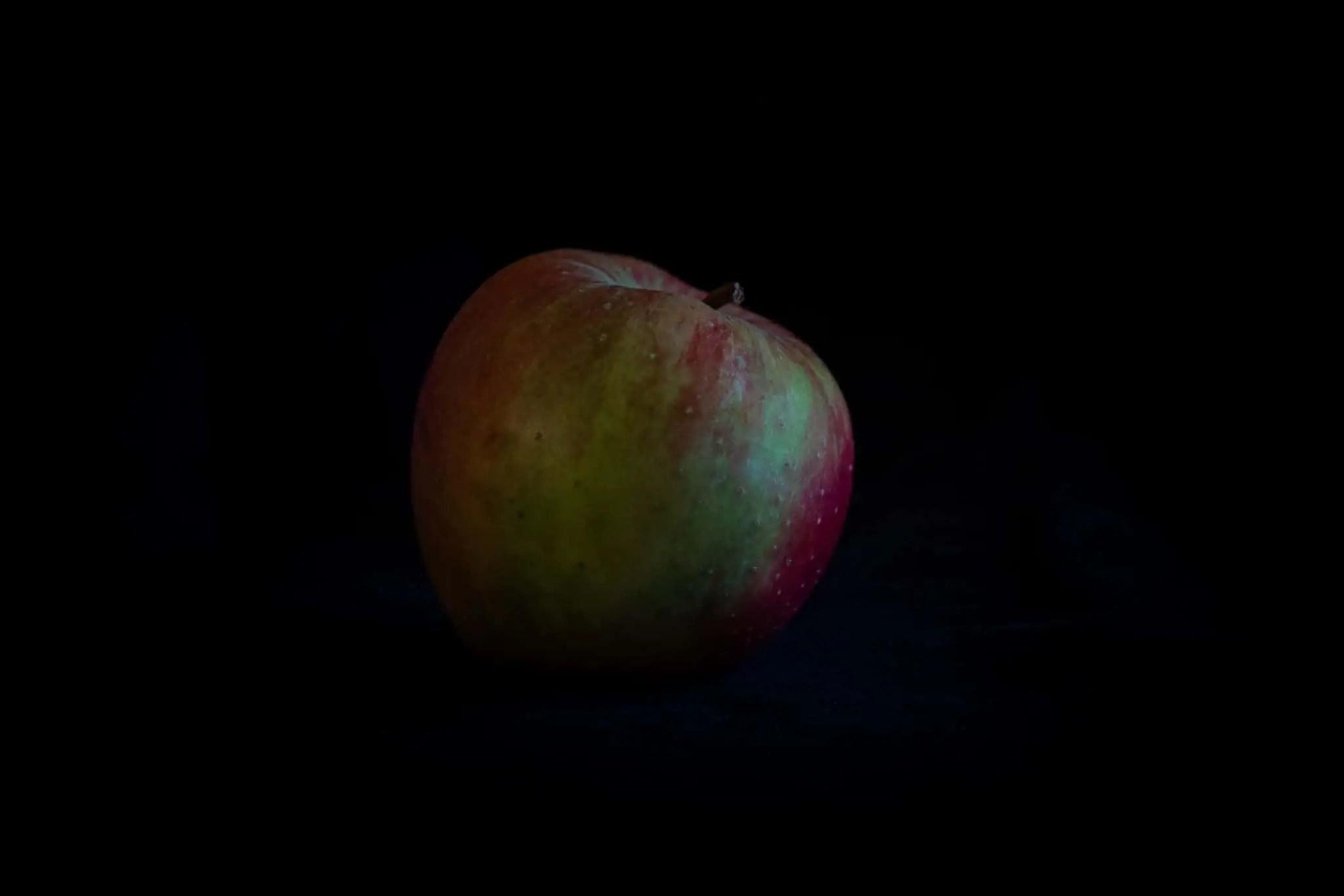 Zdjęcia jabłek w stylu rembrandta 5 scaled - Zdjęcia jabłek - polskie owoce