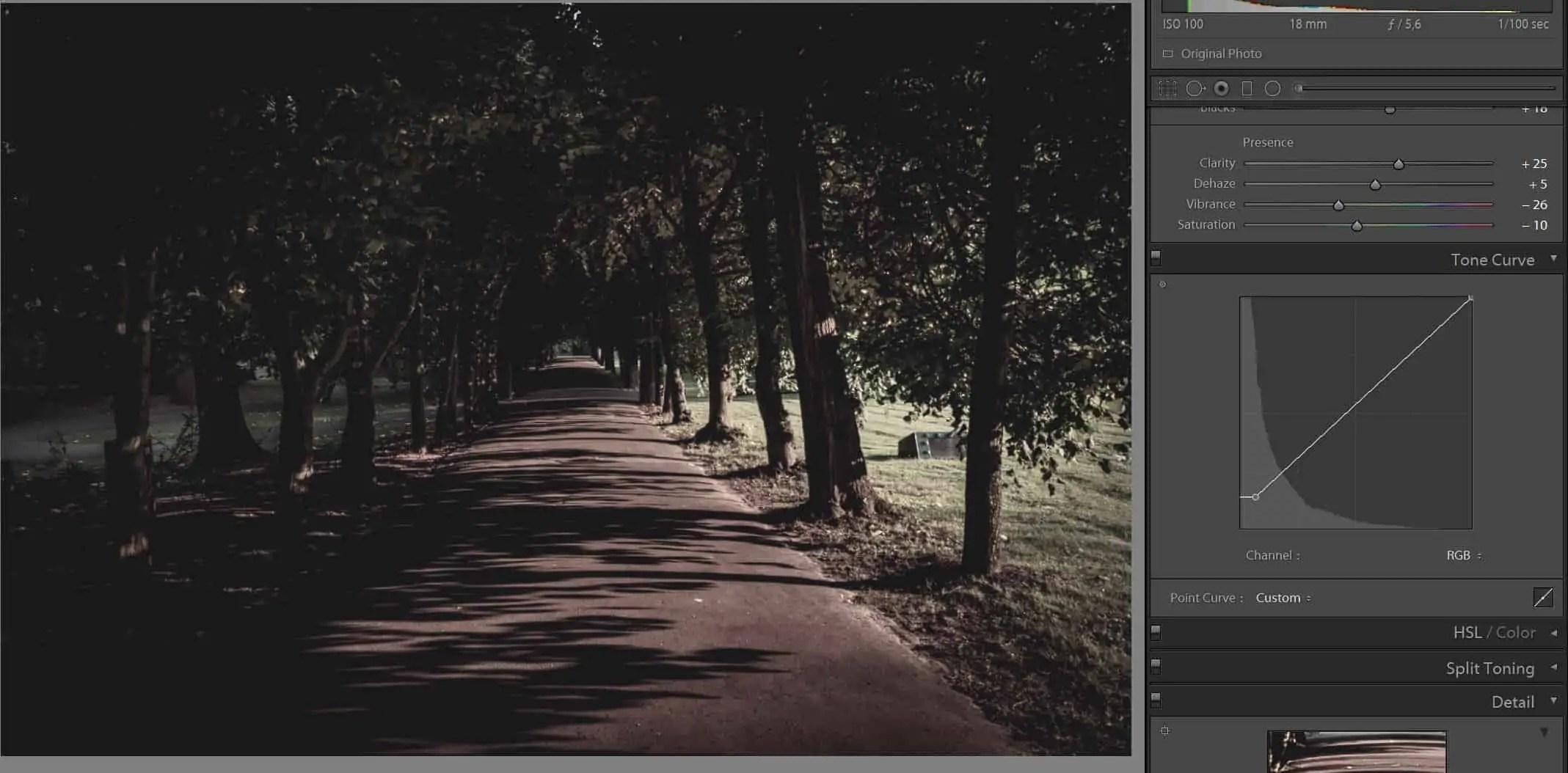 Park Oliwskiejak w filmie zdjecie originalne PO wykorzystanie krzywych - Filmowe zdjęcie ? Wystarczy 1 krok, aby je zrobić !