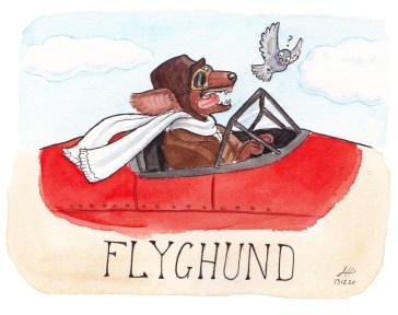 flyghund illustration ordvits