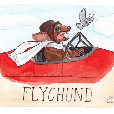 flyghund illustration ordvits