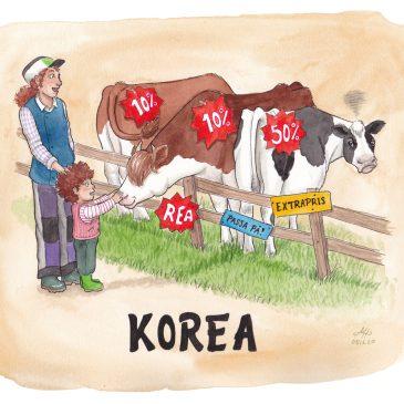korea illustration ordvits