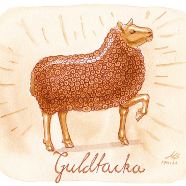 guldtacka illustration ordvits