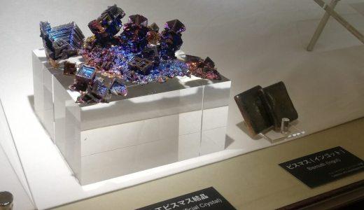 『宝石の国』展を見た後に化石ぐらい発掘して行きますか。小学生の嗜みとして。