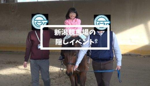 新潟競馬場の隠しイベント 「乗馬センター見学会」でサラブレッドの風格に戦慄する。