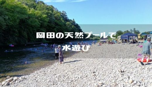 【新潟県新発田市】加治川 『岡田の天然プール』で川遊び