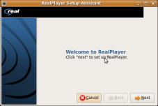 Screenshot-RealPlayer Setup Assistant