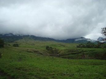 The fog already covered the mountain
